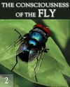 Tile the consciousness of the fly part 2