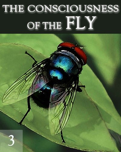 Full the consciousness of the fly part 3