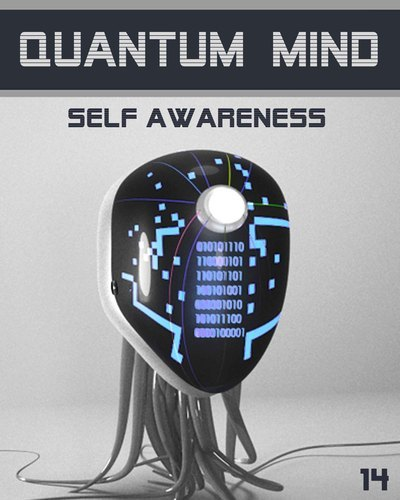 Full quantum mind self awareness step 14
