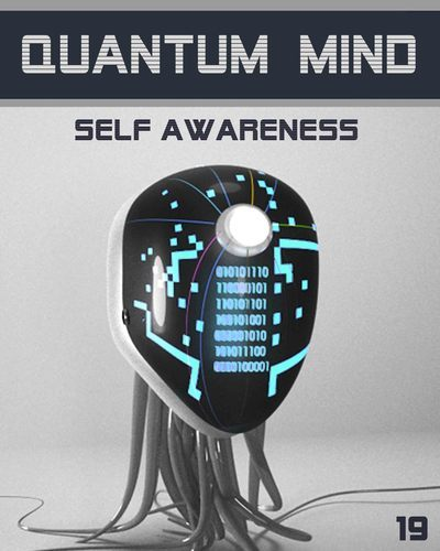 Full quantum mind self awareness step 19