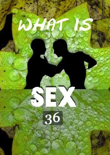 Full what is sex love as sex part 2 part 36
