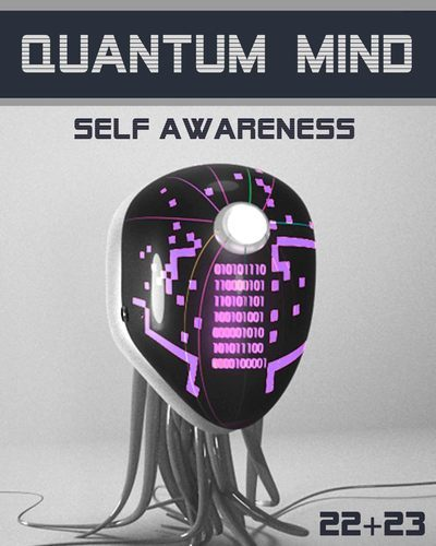 Full quantum mind self awareness step 22 23